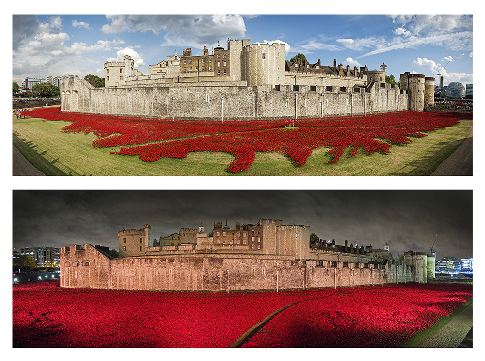 Tower-Poppies-2up