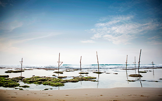 Stilt Fishermen's Posts, Ahangama Beach, Sri Lanka